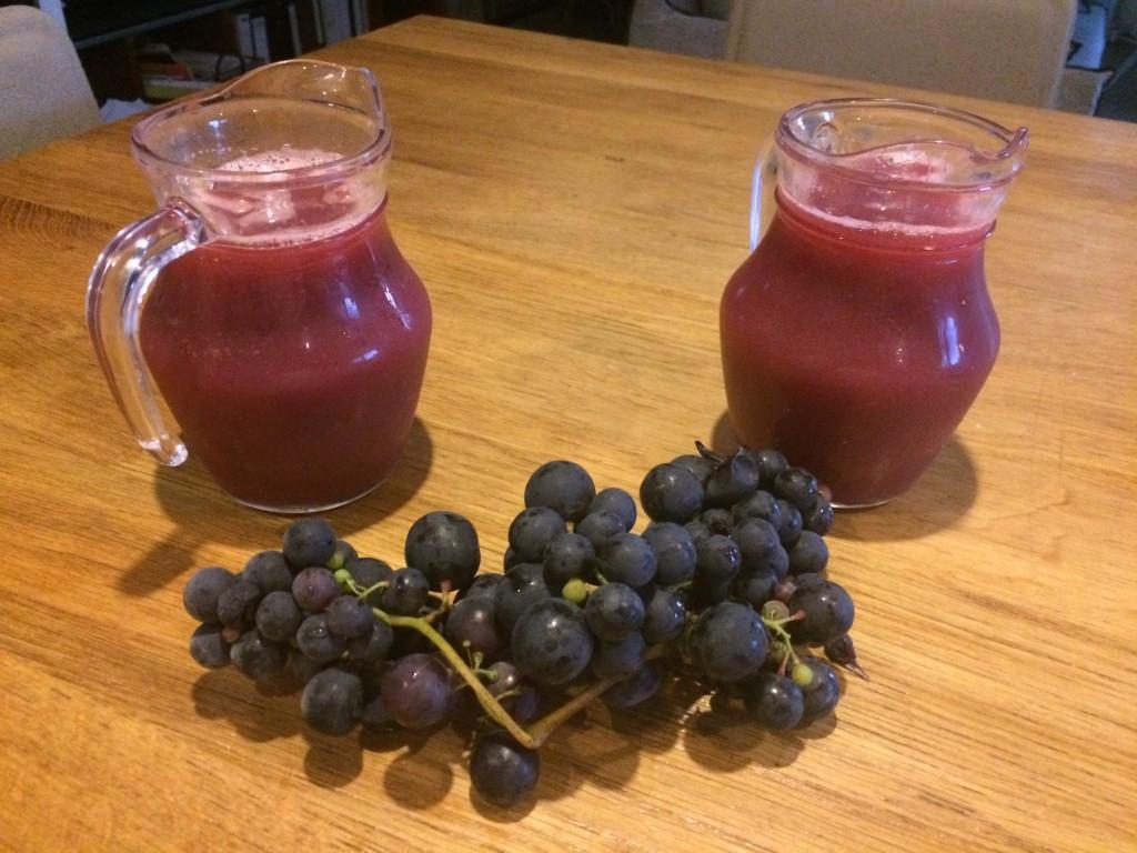 La maison d'hôtes- les Volets Bleus et ses jus de raisin